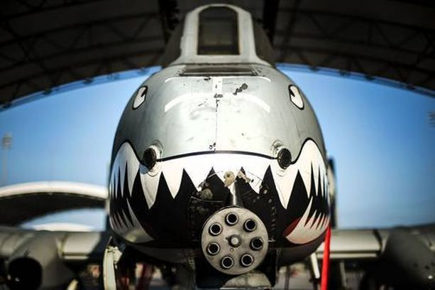 Koneen pääase on seitsenputkinen GAU-8 Avenger -rynnäkkötykki, jolla voi ampua 3 900 laukausta minuutissa.