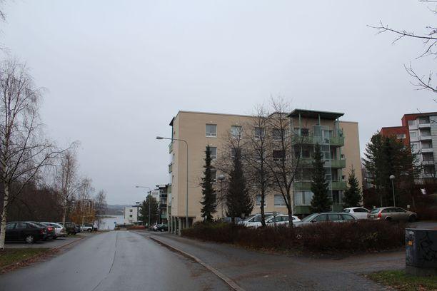 Osakkeenomistajat vaativat nyt käräjillä hinnanalennusta asuntokauppaan.