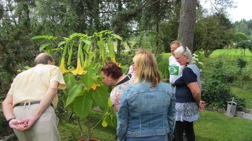Viime vuonna yli 500 puutarhaa avasi ovensa yleisölle.
