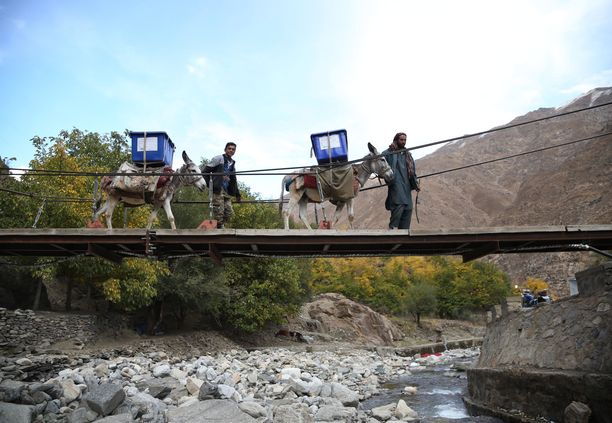 Toimitsijat kuljettavat vaalien aattona materiaaleja äänestyspaikolle Panjshirin maakunnassa, Itä-Afganistanissa.