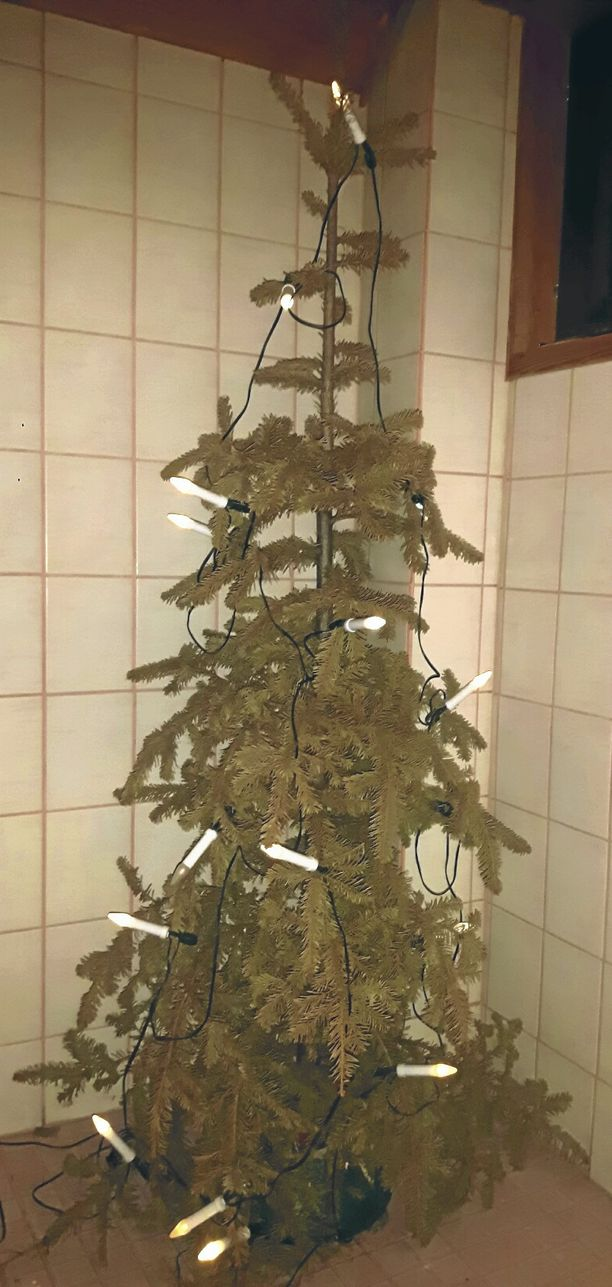 Tältä näyttää savonlinnalainen metsätalousinsinöörin Esko Oksan joulukuusi, joka on käytössä jo kolmatta joulua.