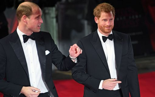 Prinssi Williamin ja prinssi Harryn välirikko jatkuu – jakavat nyt Diana-äitinsä muistorahaston kahtia
