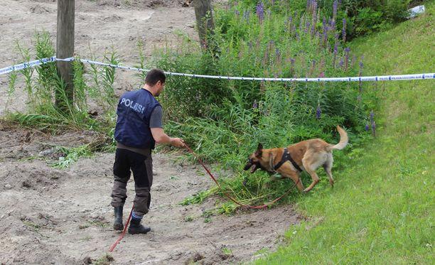 Luulöytö tehtiin maanrakennustöiden yhteydessä Jyväskylän Seppäläntiellä. Poliisi tutki aluetta mm. ruumiskoiran kanssa.