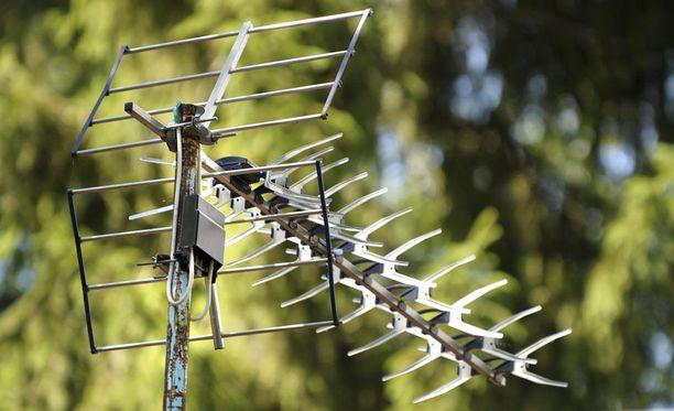 Radiokeli esiintyy yleensä kevät- tai kesäaikaan.