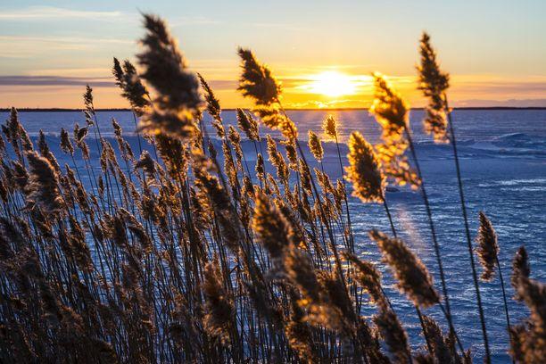 Aurinko laskee talvella jäisen meren taakse Liminganlahdella, joka Terhi Mustakankaan mielestä on yksi Oulun seudun luontohelmiä.