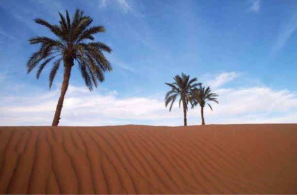 Sahara on maailman aavikoista suurin. Se tunnetaan hiekkadyyneistään, mutta vain pieni osa Saharasta on oikeasti hiekka-aavikkoa.