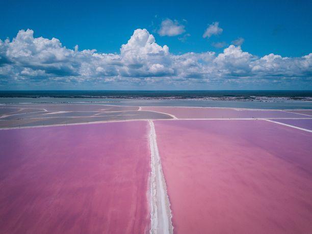 Ilmakuvaa Meksikon pinkeistä järvistä.