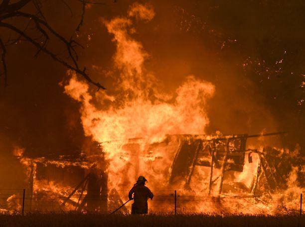 Pahimmat tulipalot ovat olleet Uuden Etelä-Walesin osavaltion alueella. Kuva otettu 21. joulukuuta.