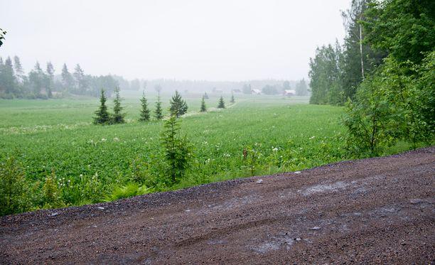 Suomen kilpalukyvyn nostamiseen ei ole vielä löydetty ratkaisua.
