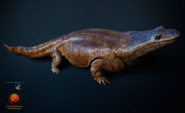 Löydöksen tehneen tutkimusryhmän johtaja Steve Brusatte kuvaili 200 miljoonaa vuotta sitten elänyttä liskoa pikkuauton kokoiseksi.