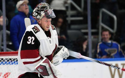 Saadaanko NHL:ään todellinen suomalaisryhmä? Herkullinen arvio uuden joukkueen rosterista