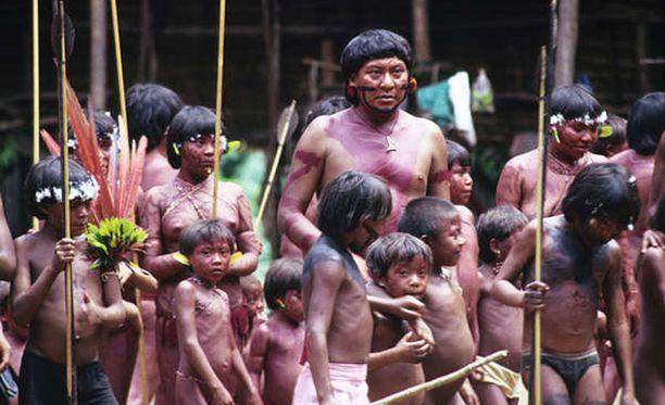 Jotkin Amazonin sademetsän heimoista ovat yhteydessä ulkomaailmaan.