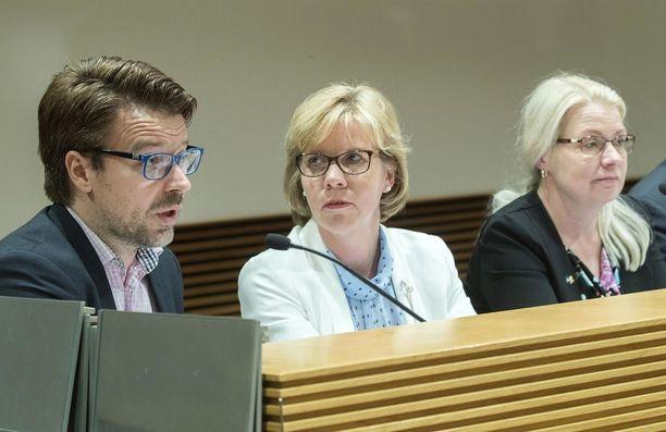 Niinistö ja RKP:n puheenjohtaja Anna-Maja Henriksson istuvat perustuslakivaliokunnassa. Henriksson on entinen oikeusministeri, Niinistö entinen ympäristöministeri.