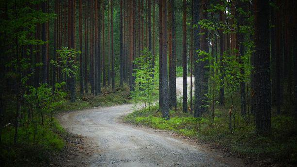 Seppänen asuu maatilalla Kontiolahdella. Häntä ei tavoitettu kotoaan eilen tiistaina.