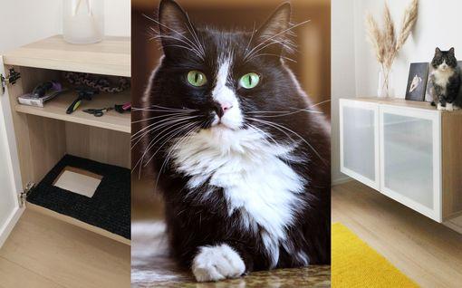 """""""Vieraat ihmettelevät"""" – Janika kyllästyi kodin kissanvessaan: teki Ikean huonekalusta"""