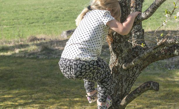 Tyttö pelastettiin puusta sahaamalla oksa katki sen sijaan, että olisi alettu saksimaan hänen pitkiä hiuksiaan. Kuvituskuva.