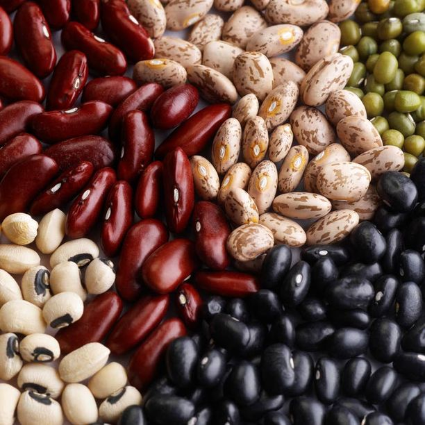 PAPUJA Palkokasvit ovat hyvä proteiinin lähde.
