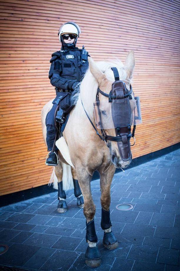 Mellakkavarusteinen poliisi ja Palaad-niminen hevonen vartioivat kulkureittiä Narinkkatorille.