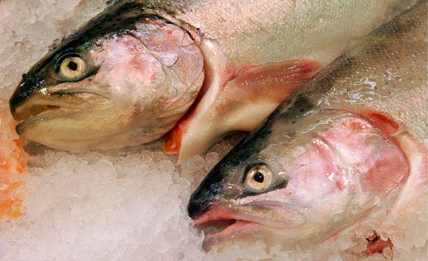 Kun halpaa lohikalaa ei ole enää tarjolla, on kotimaisten muiden kalojen kysyntä kauppoihin lisääntynyt ja hinta laskenut.