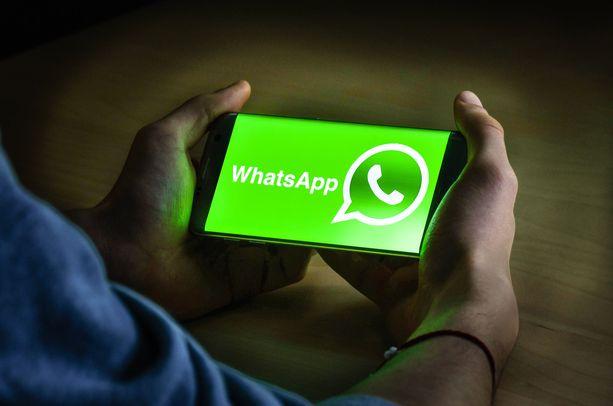 WhatsAppin puhelin- ja tietokoneversio on saamassa rinnalleen iPad-sovelluksen.