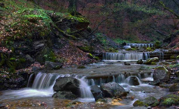 Jens Lagneholm söi kuusenoksia ja joi vettä puroista.