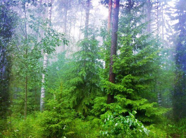 Sateita riittää tänäänkin lähes koko Suomeen.