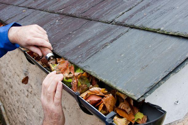 Syksypuhteisiin kuuluvat muun muassa rännien ja sadekourujen puhdistaminen lehdistä. Huoltamattomista kouruista voi seurata kosteusvaurioita.