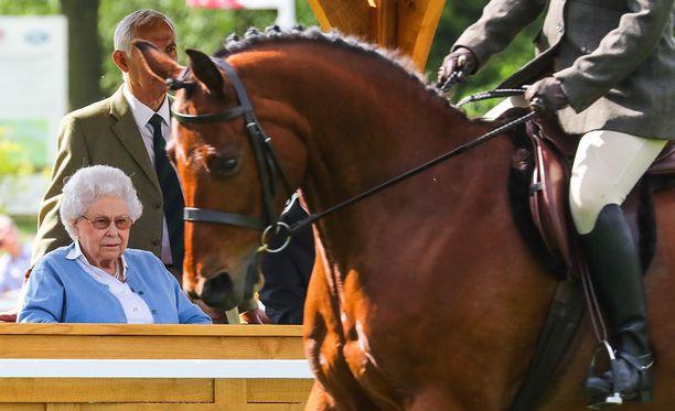 Kuningatar Elisabet syynäsi tarkalla katseella hevosnäyttelyssä esillä olleet hevoset.