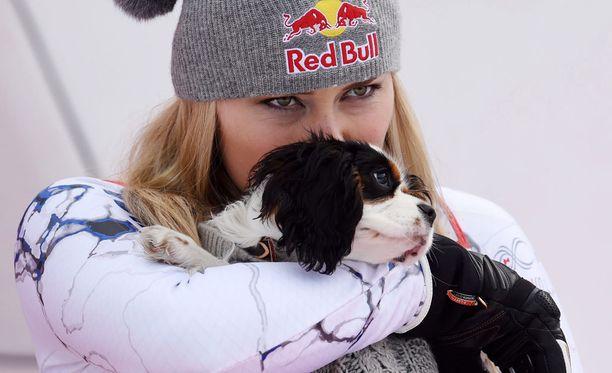 Lucy-koira on usein Lindsey Vonnin mukana kisareissuilla.