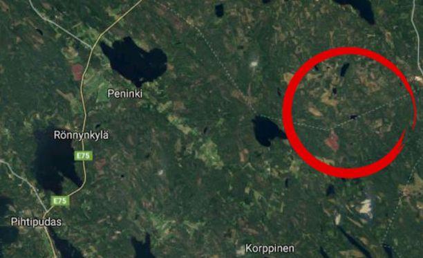 Palo on syttynyt Pyhäjärven ja Pihtiputaan rajamaastossa, pienen Löytölammen luona.