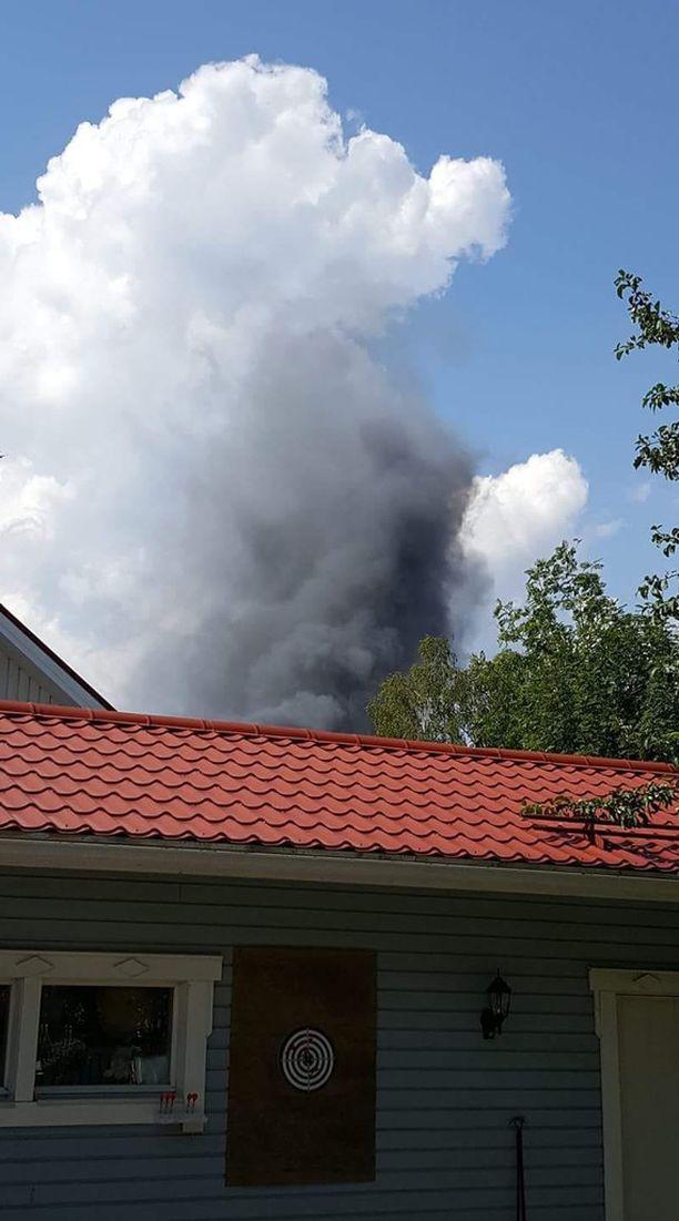 Naapuri kuvasi savupatsaan.