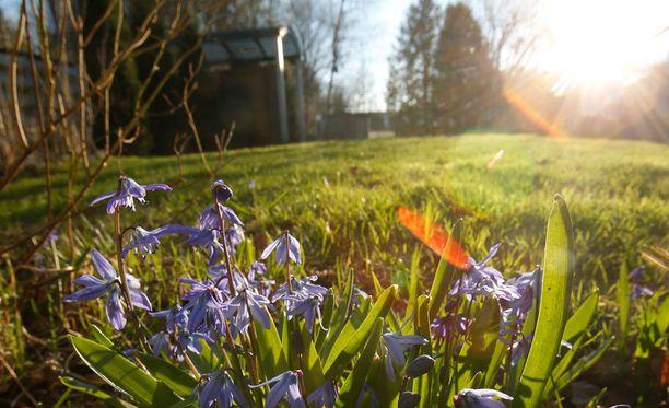 Kevät!