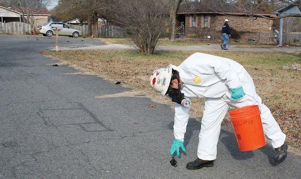 Kuolleita lintuja kerättiin kaduilta Beebessä Arkansasissa uudenvuodenpäivänä.