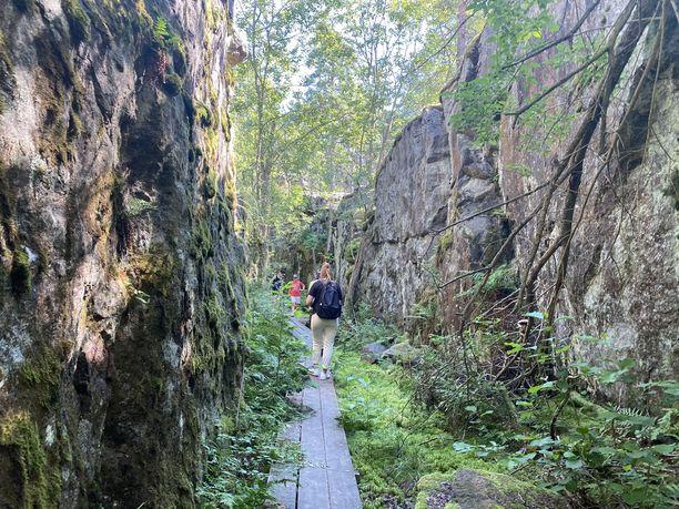 Tämä polku johtaa yli sada metrin mittaiseen tunneliin. Ulko-Tammiossa näkyy yhä muistoja viime sotien ajassa.