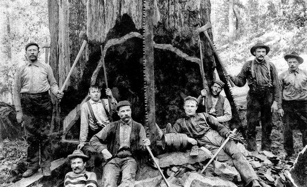 Lumperijakit eli metsätyömiehet tekivät työtään aikana, jolloin ei ollut moottorisahoja tai metsäkoneita. Ensimmäisen maailmansodan jälkeen metsätyömiehen titteliksi vakiintui lokari.