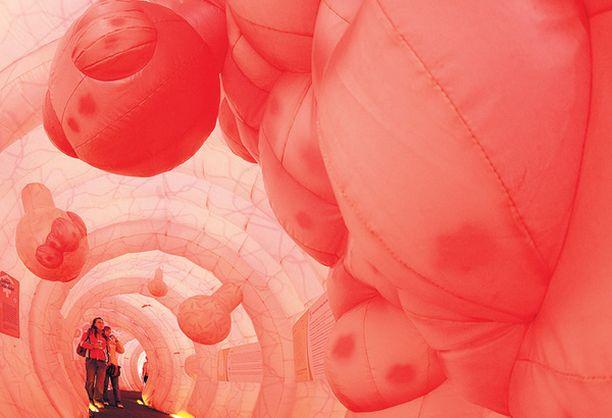 SUOLISTOSEIKKAILU. Saksassa on rakennettu maailman suurin ihmisen suolistoa kuvaava rakennelma. Tämän 30 metriä pitkän jättisuoliston sisälle pääsee tutkimusretkeilemään Dresdenissä. Suolistolla halutaan kannustaa ihmisiä tutkituttamaan omat suolensa niissä mahdollisesti piilevien syöpien varalta.
