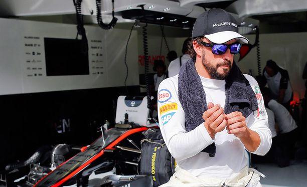 Fernando Alonso ei liiemmin kanna kaunaa toimittaja Paola Saluzzin kohutwiitistä.