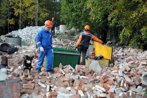 Lapinporokoira Runo on löytänyt maalimiehen. Koiran omistaja Jorma Luusua on tyytyväinen koiran työskentelyyn.