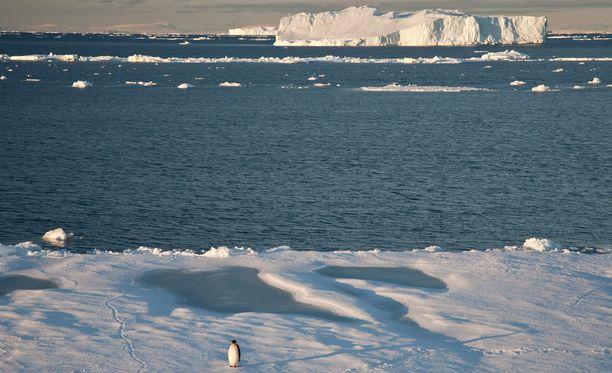 Suomalaisten retkikunta viipyy Etelämantereella tammikuun puoliväliin saakka.