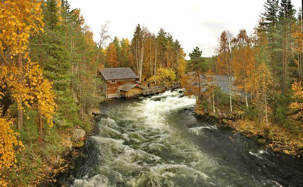 Oulangan kansallispuisto kuuluu rumien paikannimien ohella Kuusamon valtteihin. Kuvassa Myllykoski.