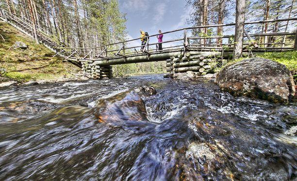 Retkeilijöitä Suomen tuoreimmassa kansallispuistossa Hossassa. Hossassa järjestetään Luonnon päivänä useita konsertteja. Kuorot ja lauluryhmät esiintyvät muun muassa Värikallioilla ja Huosiolammen rantamaisemissa.