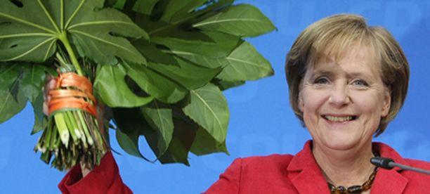 Angela Merkel julisti porvarit vaalivoittajiksi.