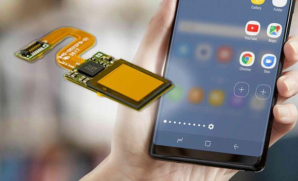 On mahdollista, että Samsungin näytöissä on pian upotettu sormenjälkilukija.