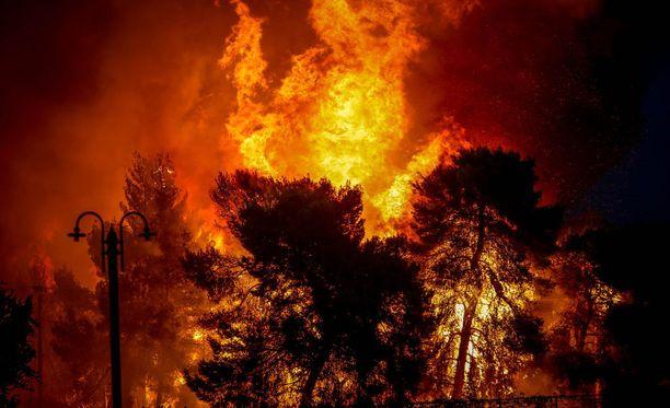 Kuva sunnuntailta Ateenan seudulta. Viranomaiset ovat julistaneet alueelle hätätilan.