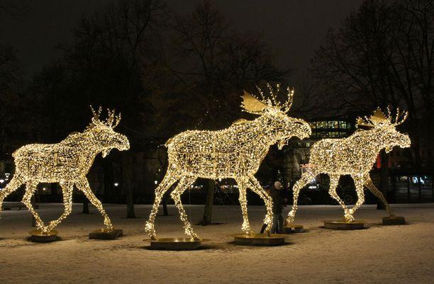 Berzelii parkin joulua valaisee juokseva hirvilauma.