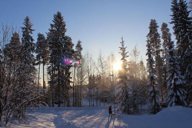 Ilmatieteen laitoksen säähavainto Jyväskylän lentoasemalla kello 10.30 sunnuntaina oli -23,9 astetta.