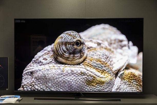 Samsungin 8K-televisiot tulevat myyntiin jo lokakuussa.