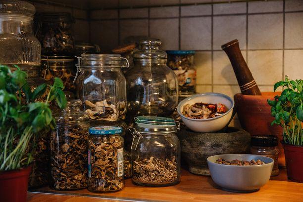 Luonnon antimien säilöminen on tärkeä keino selvityä karuissa oloissa ja pienellä rahalla. Sienet poimitaan siis talteen.