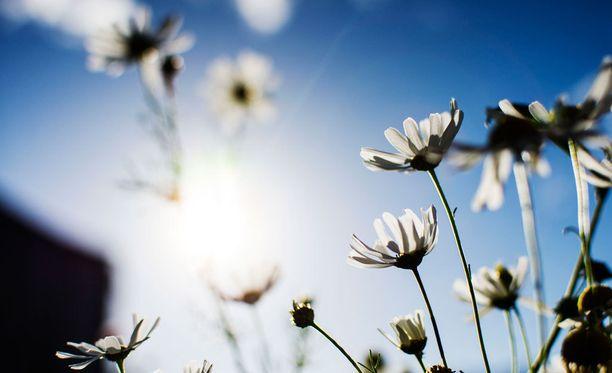 Viikonloppuna sää on monin paikoin Suomessa lämmin ja aurinkoinen.