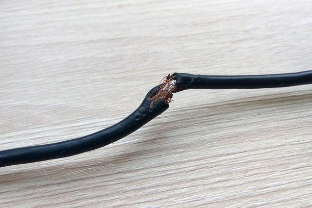 Yksi merkki hiiristä on jyrsintäjäljet ja -vauriot johdoissa. Kuvituskuva.